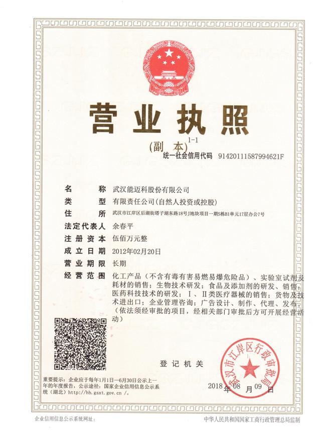武汉能迈科股份有限公司